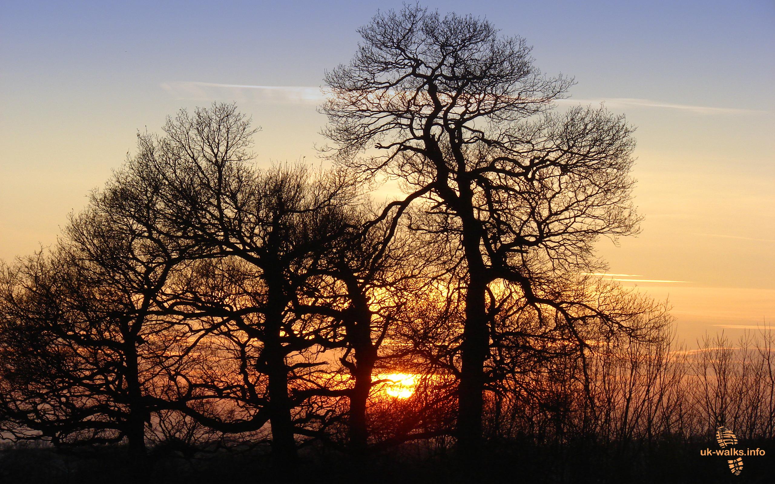 free desktop wallpaper sunset ashby in january 2012